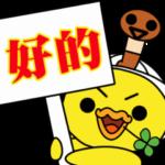 嘴饞的可愛日本家鴨♥ 動的四葉鴨
