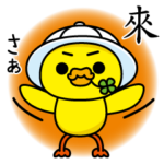 嘴饞的可愛日本家鴨♥ 四葉鴨2